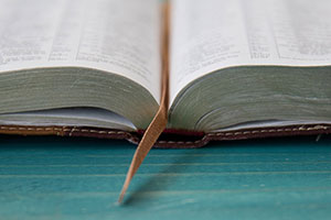New Testament Basics: Things We Thought We Knew