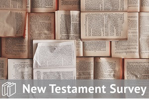 New Testament Survey Track Bundle