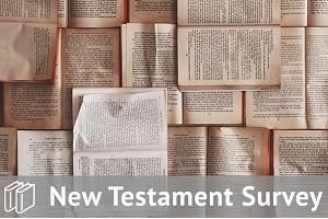 New Testament Survey Track Bundle