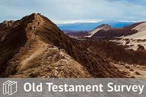 Old Testament Survey Track Bundle