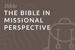 Foundation: The Bible in Missional Perspective
