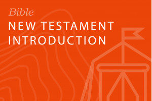 Seminary-level: New Testament Introduction