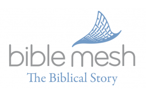 The Biblical Story Course