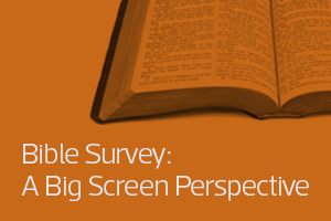 Bible Survey: A Big Screen Perspective